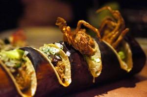 La Bodega Negra Tacos