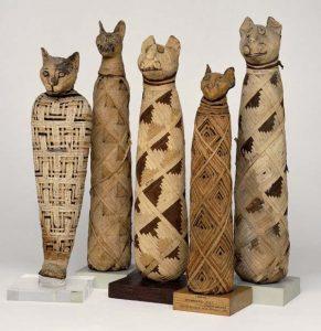 Cat Mummies at The British Museum London